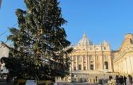 San Pietro 14